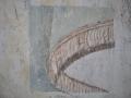 Fenêtre de sondage présentant un morceau de drapé monumental au dessus du Maître-Autel